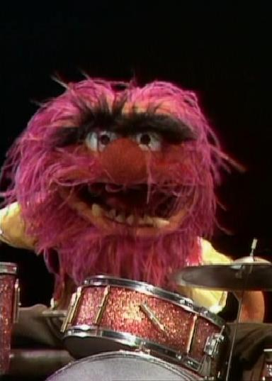100 candice my top ten favourite muppets - Animal muppet images ...
