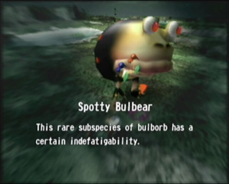 Reel22_Spotty_Bulbear.png