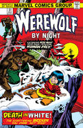 Werewolf by Night 31