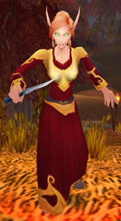 Blood Elf Surveyor