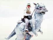 Luketauntaun