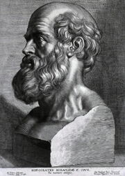 Hippocrates rubens