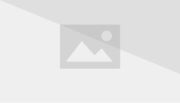 Millennium Falcon Cross-Section