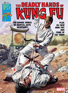 Deadly Hands of Kung Fu 21