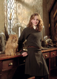 Hermione poa