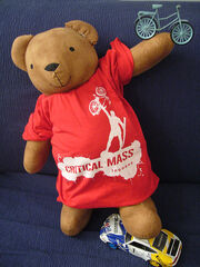 Critical mass bear