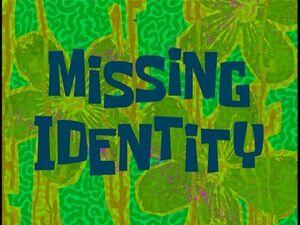 Missing Identity.jpg