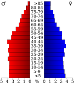 USA Bedford County, Tennessee.csv age pyramid