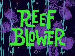 Reef Blower.jpg