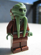 Kit Fisto
