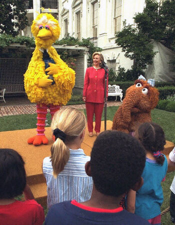 BigBird-WhiteHouse