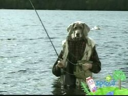 Wegmandogs.fishing