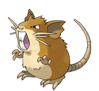Raticate