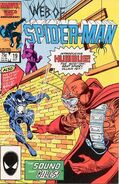 WebofSpider-Man19