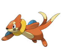 Buizel