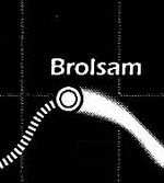 Brolsam