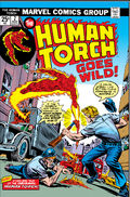 Human Torch Vol 2 2