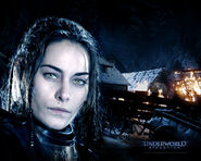 Zita Gorog in Underworld Evolution Wallpaper 4 1024
