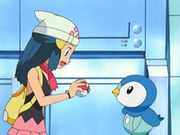 EP470 Maya se queda con Piplup
