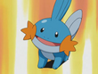 EP277 Mudkip