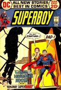 Superboy Vol 1 189