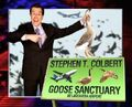 ColbertGooseSanctuary.jpg