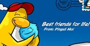 Awardfriend
