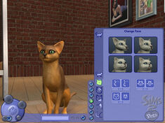 Sims2ppcscrncapcatfacewm