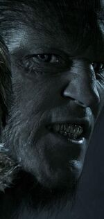 Fenrir Greyback HBP