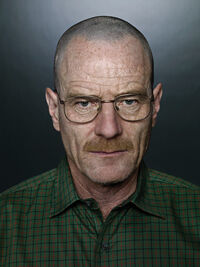 Season 2 - Walt