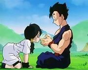 Gohan teaching Videl
