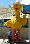 Sesame-street-beach-4