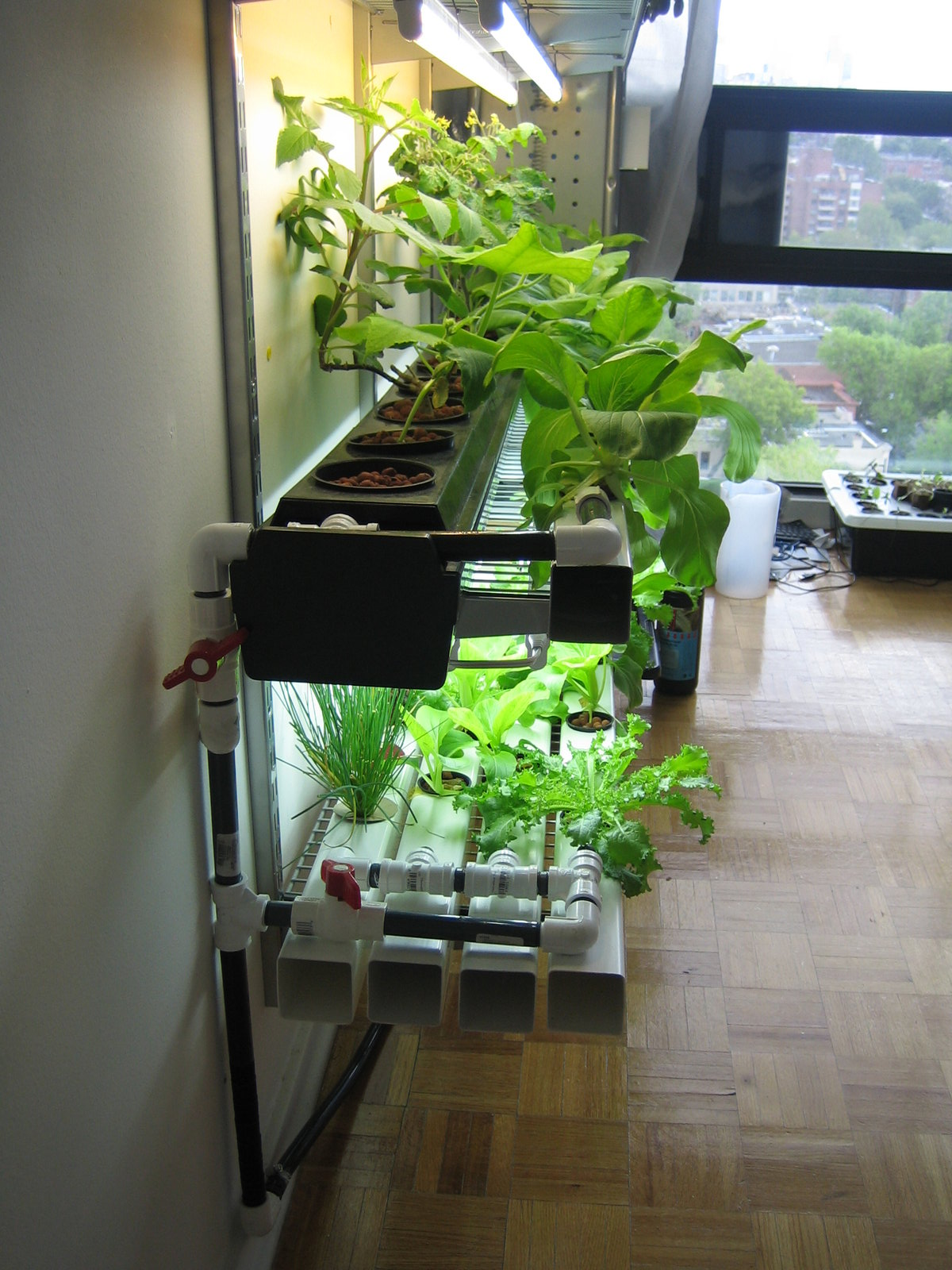 Home Built Systems Hydroponics Wiki