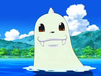 EP558 Dewgong (3)
