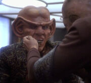 Quark eats Kohlanese stew