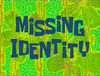 Missing Identity