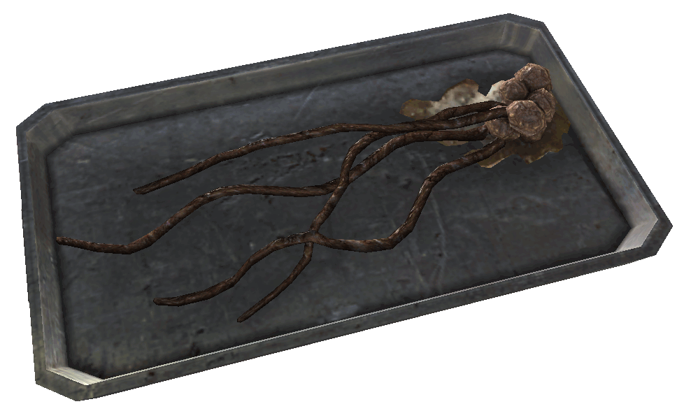 FO3MZ alien squid food