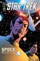 Spock Reflections issue 2 RI cover.jpg