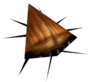 Cockroach transparent
