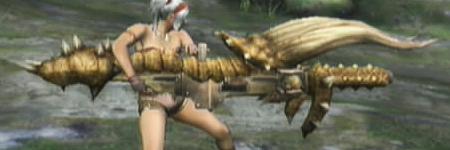 liste des armes de monster hunter tri DiablosHvyBowgun