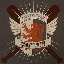 Gryffindor Quidditch Captain