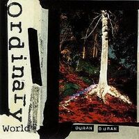 Duranduran ordinaryworld