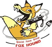 SFG FOXHOUND