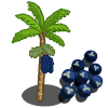 Acai Tree-icon