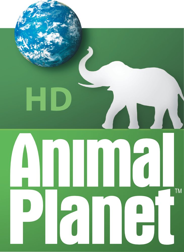 Animal Planet HD (United States) - Logopedia, the logo and branding