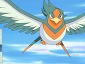 Pokemon shiny 170px-EP361_Swellow_de_Alana