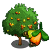 Cashew Tree-icon