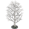 Birch Tree-icon