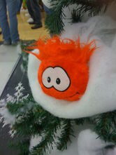 3rd Anniversarry In Vaughan Mills - Orange Puffle