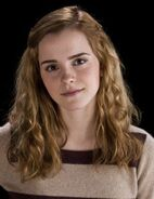What color was Hermione's dress for the yule ball?   ChaCha